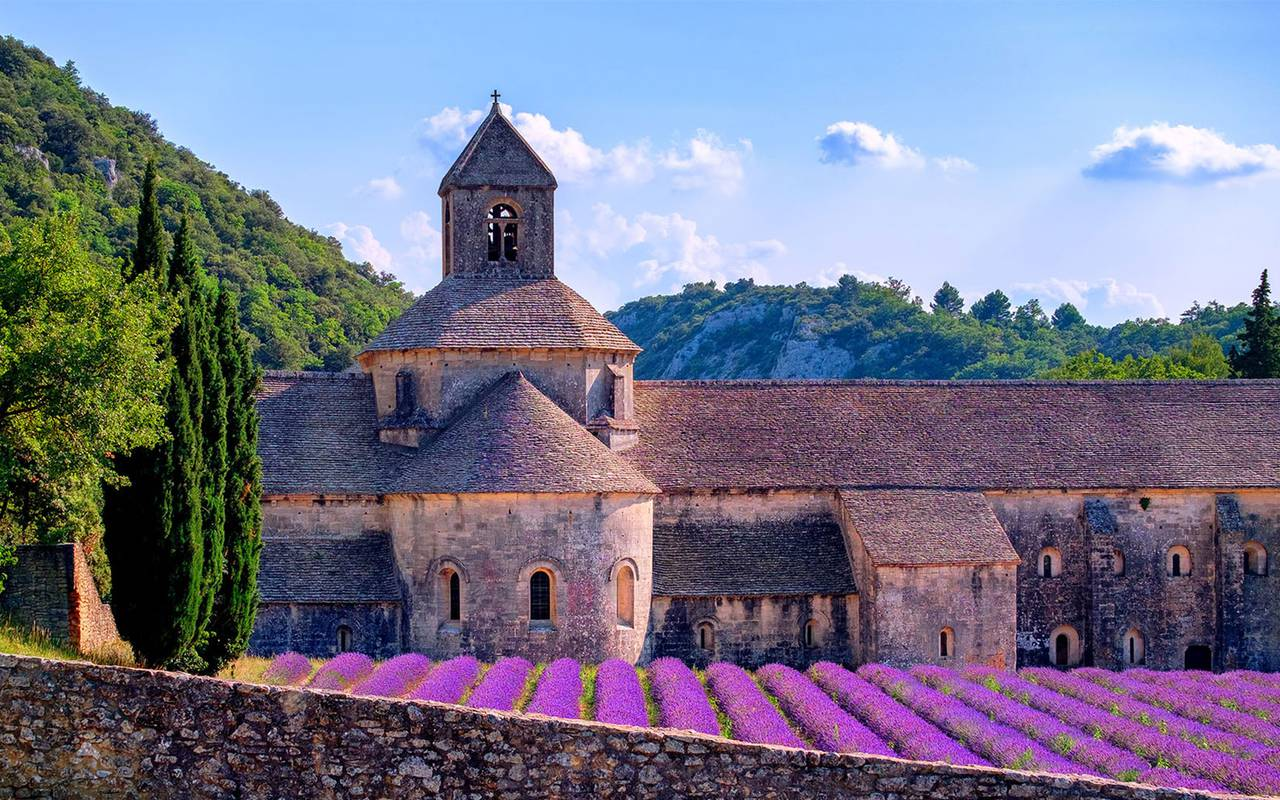The famous lavender of Provence around our luxury hotels,