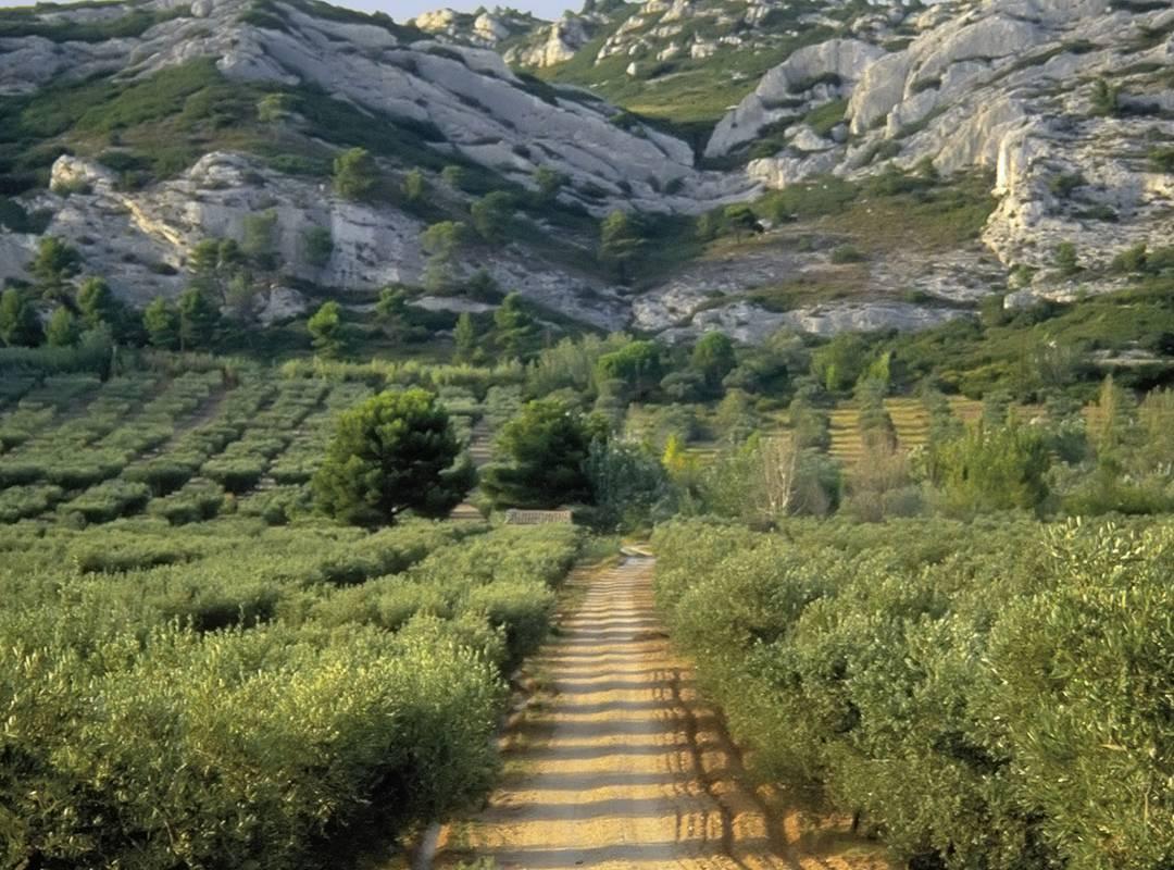Ride view of the mountains, 5 star hotel provence, Le Vallon de Valrugues & Spa.