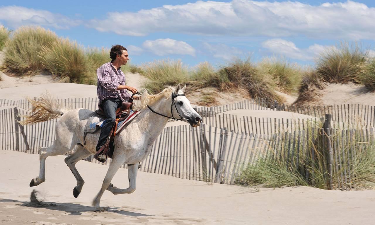 Horse ride around the sea, luxury stay in provence saint remy de provence, Le Vallon de Valrugues & Spa.